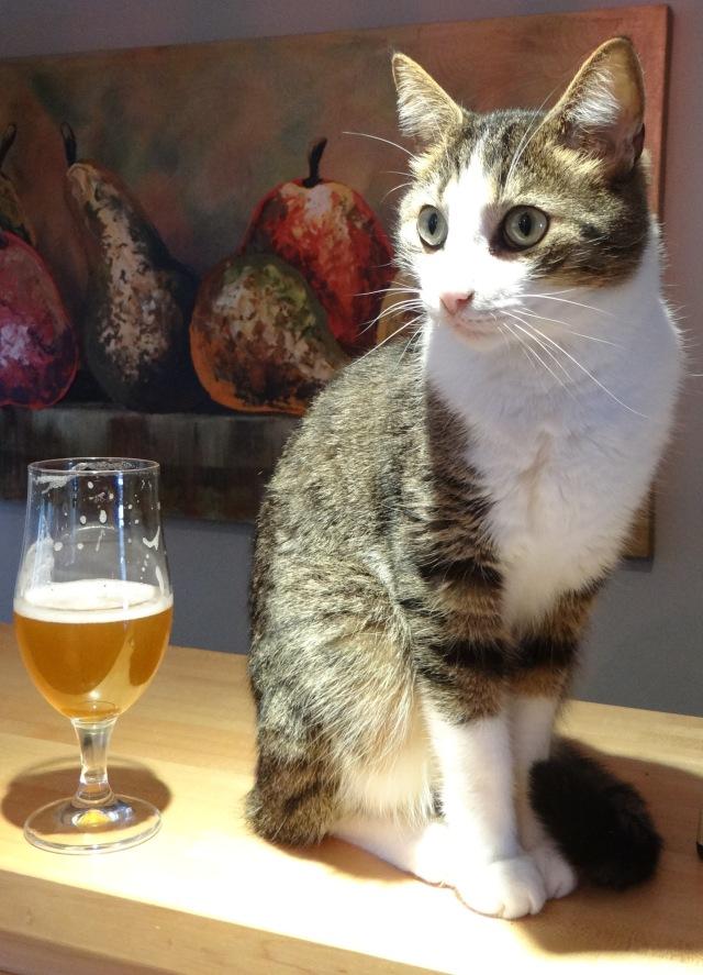 1-Cats Meow