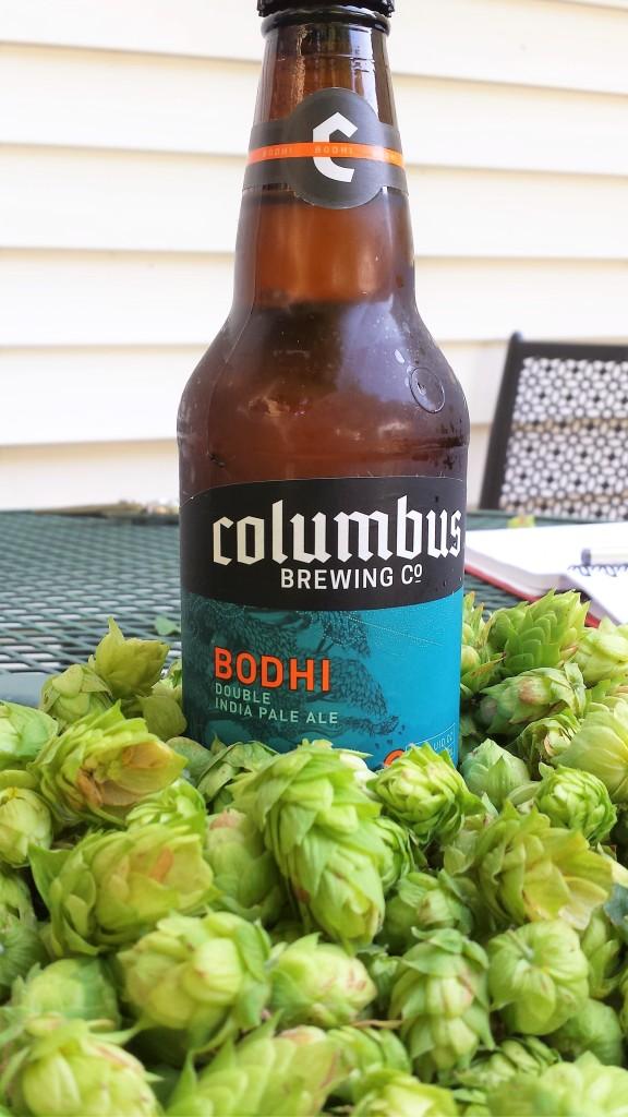 bodhi_fresh-hops