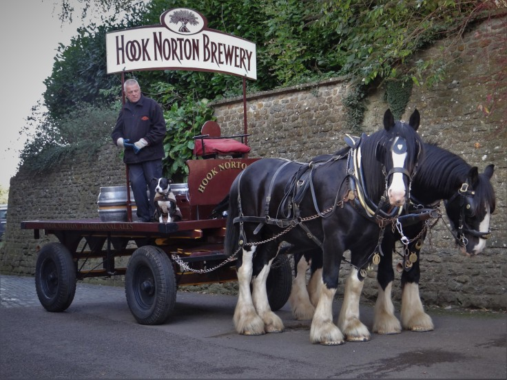 Hook Norton Draft Horses